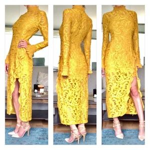 Alexis Fala Illusion Lace Midi Dress